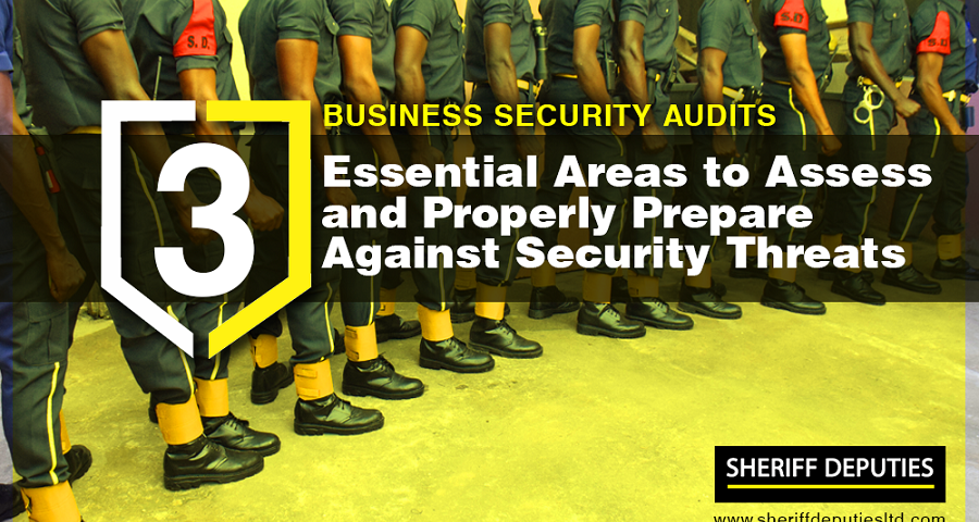 business security audits