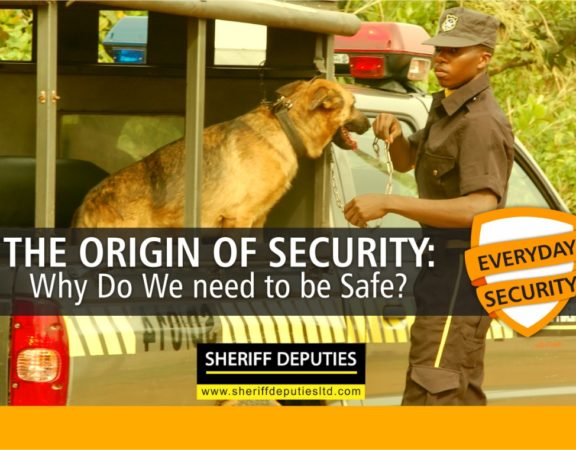 The Origin of Security - Why Do We need to be Safe?