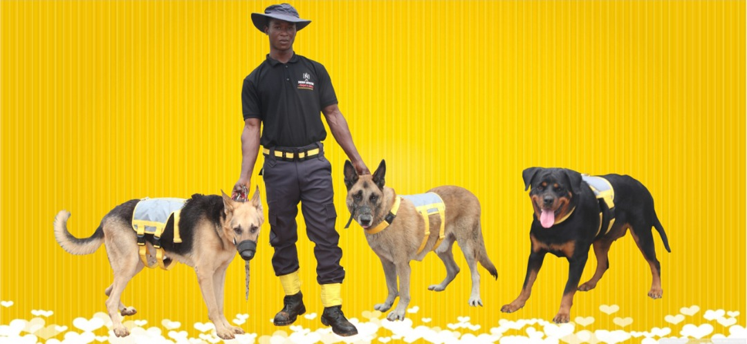 Sheriff deputies k9