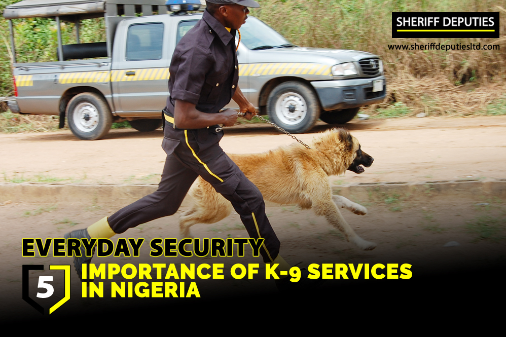 Importance Of K-9 Services In Nigeria